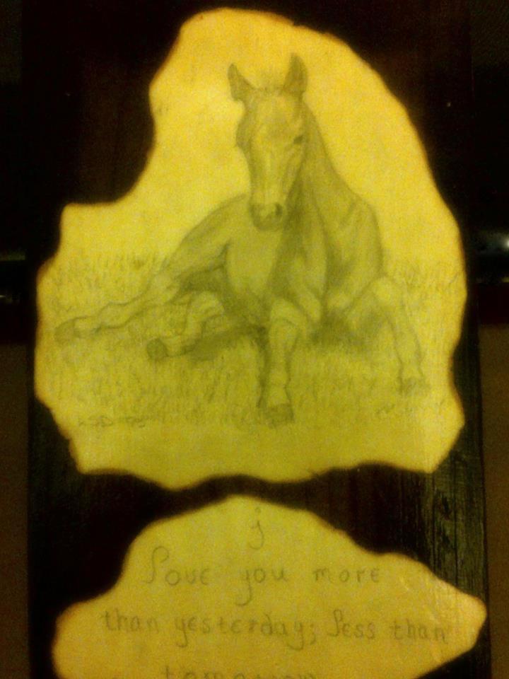 foal sketch
